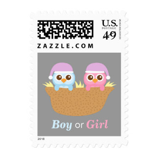Baby Owl Gender Reveal Baby Shower Party Postage Stamp