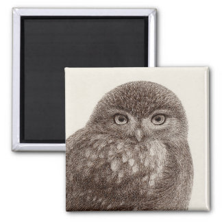 Baby Owl Magnet