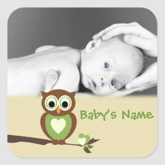 Baby Owl/ Photo Square Sticker