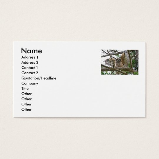 Baby Owl Picture Business Card