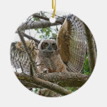 Baby Owl Picture Double-Sided Ceramic Round Christmas Ornament