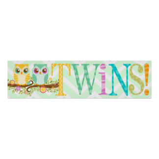 Baby Owl Twins - Baby Shower Banner Print