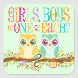 Baby Owl Twins - Gender Reveal / Unknown Square Sticker