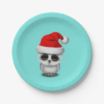 Baby Owl Wearing a Santa Hat Paper Plate