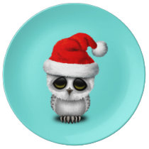 Baby Owl Wearing a Santa Hat Plate