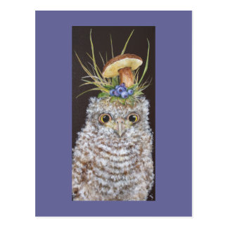 baby owl with blueberries and mushroom hat postcard
