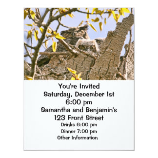 Baby Owls and Mother Owl in a Nest 4.25x5.5 Paper Invitation Card