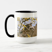 Baby Owls and Mother Owl in a Nest Mug