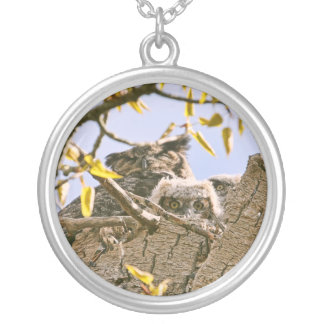 Baby Owls and Mother Owl in a Nest Round Pendant Necklace