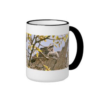 Baby Owls and Mother Owl in a Nest Ringer Mug