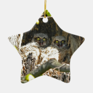 Baby Owls Ceramic Ornament