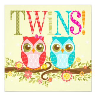 Baby Owls - Girl and Boy Twins Shower Invitation