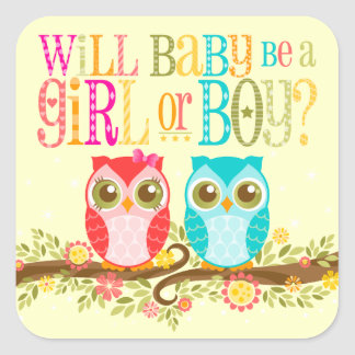 Baby Owls Girl or Boy Gender Reveal - Stickers