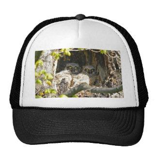 Baby Owls Trucker Hat