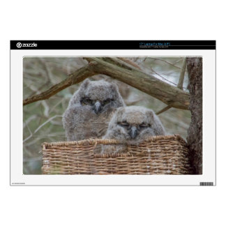 """Baby Owls in a Wicker Basket Nest Decals For 17"""" Laptops"""