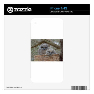 Baby Owls in a Wicker Basket Nest Decals For The iPhone 4