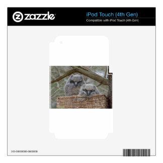 Baby Owls in a Wicker Basket Nest iPod Touch 4G Skin