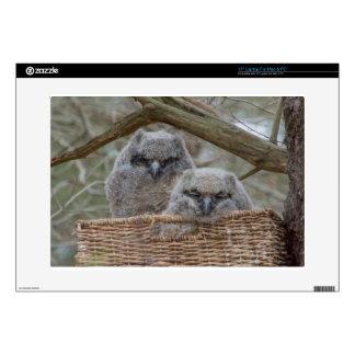 Baby Owls in a Wicker Basket Nest Skin For Laptop