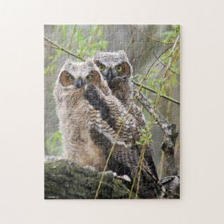 Baby Owls Puzzle