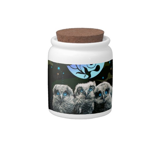 Baby Owls Under The Moonlight Candy Jars