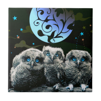 Baby Owls Under The Moonlight Tile
