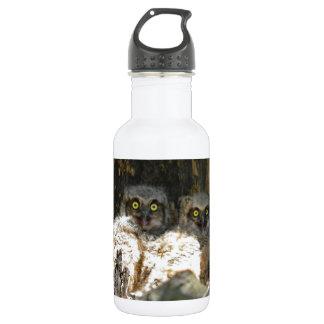 Baby Owls Water Bottle
