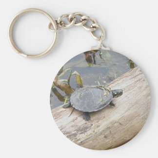 Baby Painted Turtle Keychain