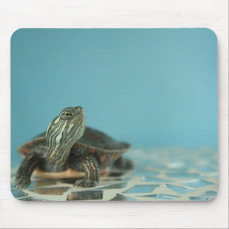 Baby Painted Turtle Mousepad