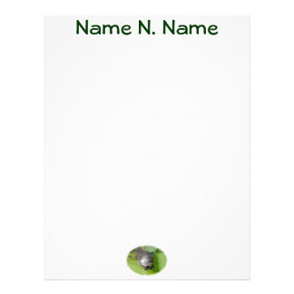 Baby Painted Turtle on Lilypad Letterhead