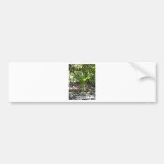 Baby Palm Tree Bumper Sticker