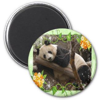 baby-panda-00018-85x85 2 inch round magnet