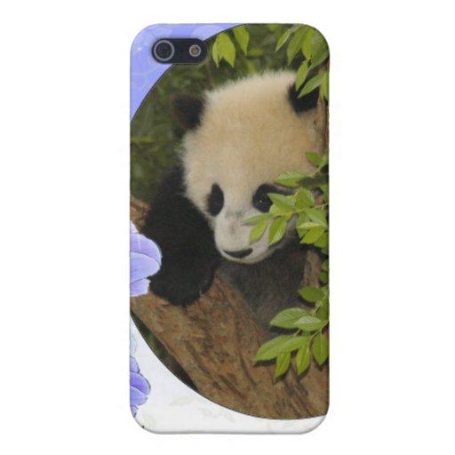 baby-panda-00089-85x85 iPhone 5 protectores
