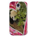 baby-panda-00163