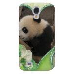 baby-panda-00170