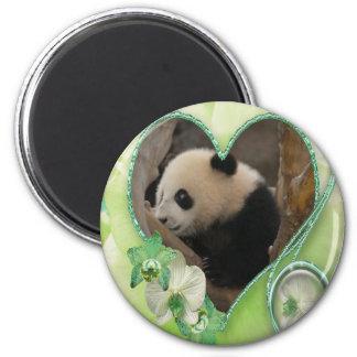 baby-panda-00170 2 inch round magnet