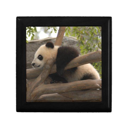 baby-panda-10x10 jewelry box