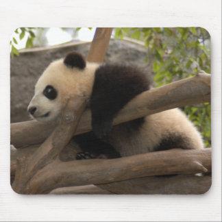 baby-panda-10x10 alfombrillas de ratones