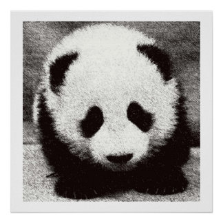Baby Panda Artwork Posters Prints