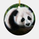 Baby panda balancing on a log christmas ornaments