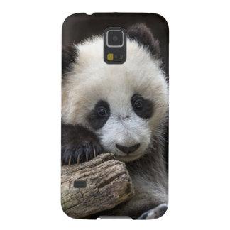 Baby panda climb a tree case for galaxy s5