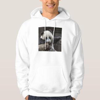 Baby panda climb a tree hoodie