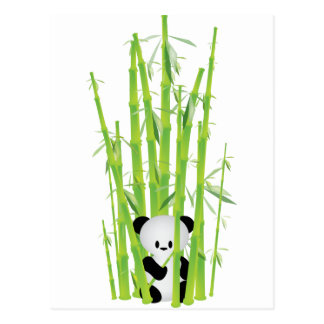 Baby Panda in Bamboo Forest Postcard