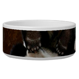 Baby pandas playing - baby panda  cute panda bowl