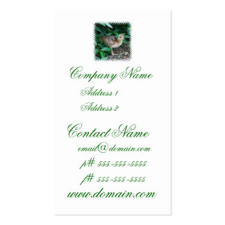 Baby Peacock Chick Business Card