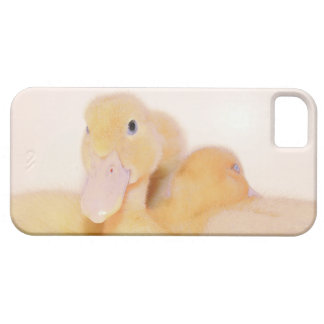 Baby Pekin Duck Duckling Bird Animal Pet iPhone SE/5/5s Case