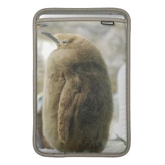 """Baby Penguin 11"""" MacBook Sleeve"""