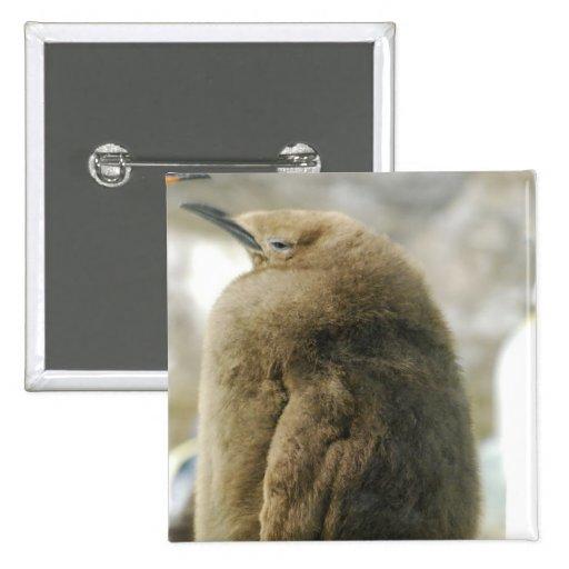 Baby Penguin Pin