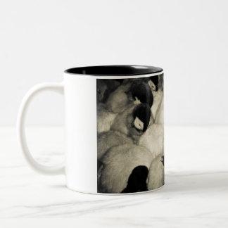 Baby Penguins Two-Tone Coffee Mug