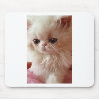 Baby Persian Mouse Pad