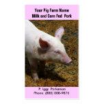 Baby Pig for Pork  Farming Business Card